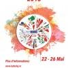 """Festivalul Multiculturalităţii 2015  eveniment integrat în programul """"Zilele Clujului"""" şi în """"Cluj – Capitală Europeană a tineretului"""""""